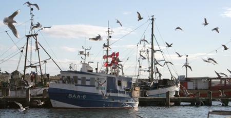 Fischerei-Erlebniszentrum Sassnitz